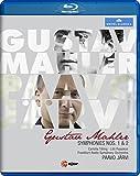 Mahler: Symphonies Nos. 1 & 2 [Paavo Järvi, Frankfurt Radio Symphony Orchestra] [C Major Blu-ray] [NTSC] [2014] [Blu-ray]