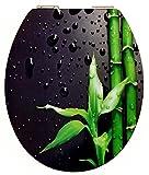 Cornat KSDSC304 Art of Acryl WC-Sitz, Hochglanz-Acryloberfläche, Holzkern, Klavier schwarz