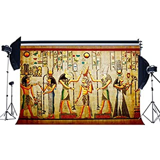 Sunny Star Vinyl 7X5FT Shabby Egypt Backdrop Old Egyptian Mural Painting Backdrops Ancient Pharaoh and Hieroglyphics Photography Background for Person Culture Historic Tourism Photo Studio Props YX678