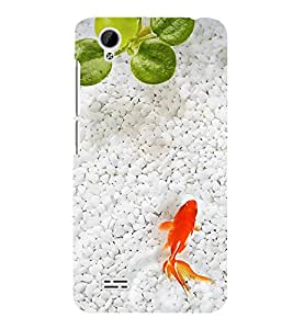 Fuson Designer Back Case Cover for Vivo Y31 :: Vivo Y31L (Auarium Fish White pebbles Hobbie Golden Fish)