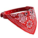 Foodie Puppies Adjustable Nylon Neck Scarf Bandana Collar for Dogs Puppy and Cats