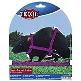 Trixie Nylon arnés con correa para los hurones/ratas, 12-25cm x 8mm, 4unidades