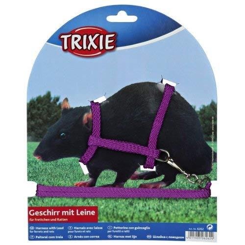 Trixie Harnais avec Laisse en Nylon pour furets/Rats, 12-25cm x 8mm, Lot de 4