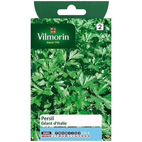 Vilmorin - Sachet graines Persil géant d'Italie