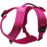 Da Jia Inc No-pull Hundegeschirr-3M Reflektierende Outdoor Adventure Pet Weste mit Griff Nylon Heavy Duty Sicherheitsgriff für Hund Training oder Walking Haustier Geschirr (Pink, M23.5-28.5in)