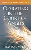 Operating in the Court of Angels: Volume 2 (The Courts of Heaven)