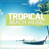 Tropicalise (Raul Rincon's Djum Djum Dub)