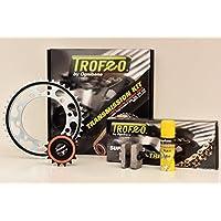Trofeo 252950000Kit de transmisión para Honda CBR 1100XX