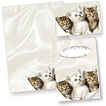 TATMOTIVE Katzen Briefpapier (50 Blatt) Motivpapier A4 90g inkl. 3 x 4 Postkarten + Schreibblock