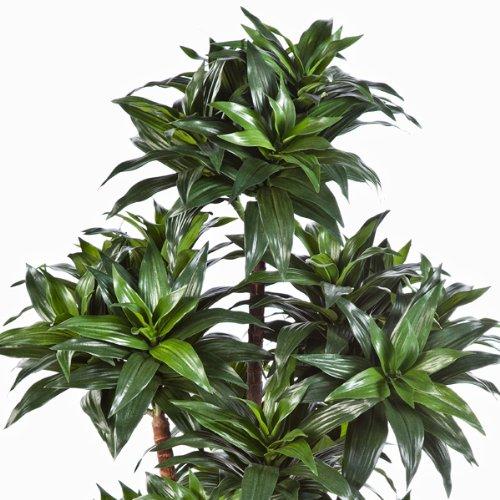 artplants – Künstliche Dracaena Fragrans Compacta Pflanze Domingo, grün, 120 cm – Grüner Kunstbaum/Deko Zimmerbaum