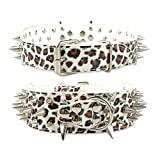 BullyBreeds Kunstlederkragen mit Spitzen Nieten (XL, Leopard weiß)