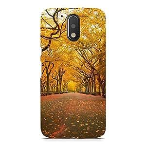 Hamee Designer Printed Hard Back Case Cover for Motorola Moto G4 Play Design 4778