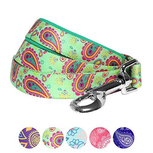 Blueberry Pet Paisley Flower Print Dog Lead with Soft & Comfortable Handle,  150 cm x 2cm, Emerald Green, Medium, Leads for Dogs, Matching Collar &