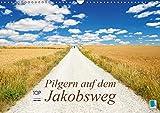 Pilgern auf dem Jakobsweg (Wandkalender 2019 DIN A3 quer): Der Hauptweg in Spanien: Camino de Santiago (Monatskalender, 14 Seiten ) (CALVENDO Orte) - CALVENDO