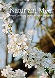 Natur am Meer - Wälder, Gärten und Blumen am Rande der Ostsee (Wandkalender 2019 DIN A2 hoch): Die Mecklenburger Ostseeküste und ihr Umland werden ... (Monatskalender, 14 Seiten ) (CALVENDO Natur)