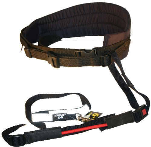 hundeinfo24.de 110JO/2 Jogginggurt Jogging Leine Julius K9® Größe 2 für Hunde ab 25 Kg – K-9