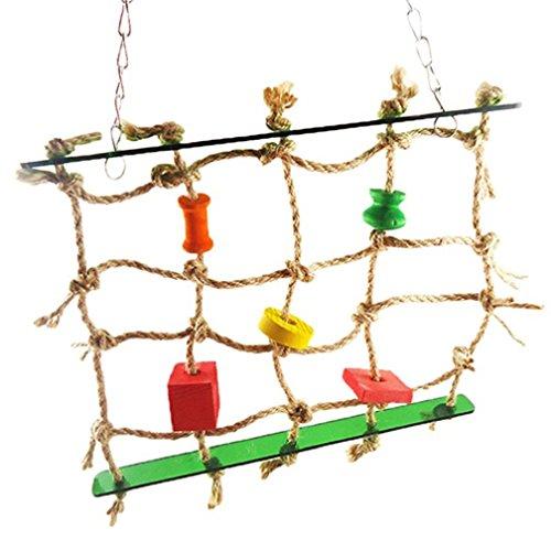 alkyoneus Pet Parrot Birds Kletterseil Net Kleine Tiere Swing Spielzeug (Kletterseil Net)