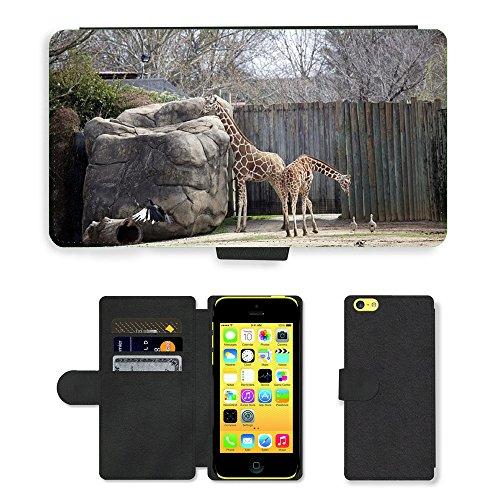 Just Mobile pour Hot Style Téléphone portable étui portefeuille en cuir PU avec fente pour carte//m00138522Girafes debout Zoo faune//Apple iPhone 5C