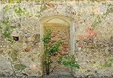 1art1 73118 Mauern - Romantische Garten-Mauer, 3-Teilig Fototapete Poster-Tapete 360 x 250 cm