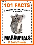 """IP Factly presents... """"101 Facts… Marsupials!""""  Amazing facts, photos and  video links  to some of the world's most unusual animals.  IP Factly's 101 Facts series has been designed to encourage and bolster independent reading by whetting the appetit..."""