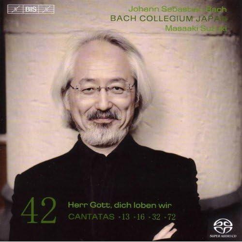 Meine Seufzer, meine Tranen, BWV 13: Aria: Achzen und erbarmlich Weinen (Bass)