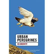 Urban Peregrines (Pelagic Monographs)
