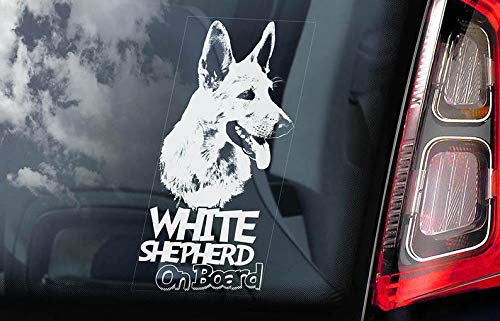 CELYCASY White Shepherd on Board - Auto Window Sticker - American Canadian Dog Sign Decal - V01