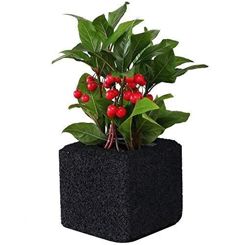 Purificador de aire Beesket de carbón vegetal