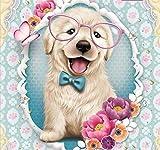 Kit fai da te per diamond painting 5D, kit completo per dipingere con i numeri, motivo: cane con occhiali con strass ricamo a punto croce, forniture artistiche su tela decorazione da parete 30 x30 cm