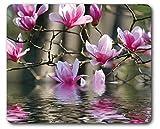 1art1 89296 Blumen - Magnolienblüten Spiegeln Sich Im Wasser Mauspad 23 x 19 cm