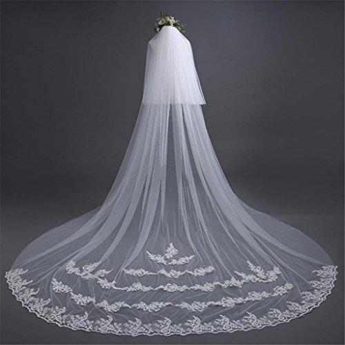 Vestito da cerimonia nuziale 3m stile europeo osso sulla sezione lunga della coda lunga con un velo dei capelli bianchi