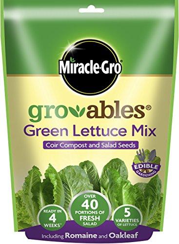 miracle-gro-119467-7-x-7-x-7-cm-diseno-de-plantas-color-amarillo-1
