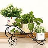 HZH Eisen Art Multi Storey Blumenregal Balkon Boden Typ Chlorophytum Blumentopf Regal Zimmer Multifunktionale Blumenständer (Color : Black)