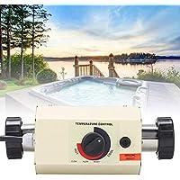 Calentadores para piscinas para calentadores y accesorios | Amazon.es