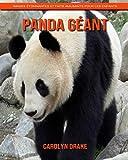 Panda Géant: Images étonnantes et faits amusants pour les enfants