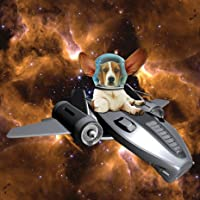 Space Cowboy Basset Hound Birthday Card