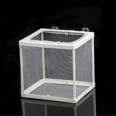 Moligh doll Fischbehaelter Plastikrahmen Weiss Netz Fischbrut Brutplatz Brutkasten mit Saugnaepfe