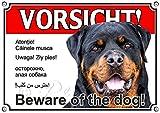 Hundeschild - ROTTWEILER - Metallschild - VORSICHT in sechs Sprachen, DIN A4