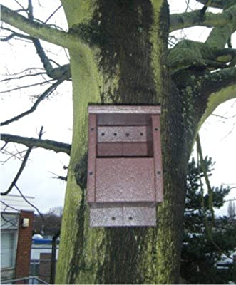 Bird Nest Box open front for Blackbirds from SignLine