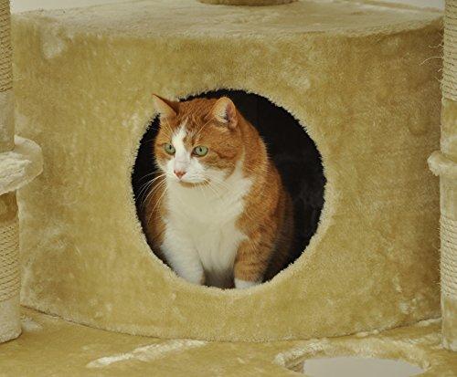 nanook arbre chat xxl g ant haute qualit tr s solide et robuste pour grand chat. Black Bedroom Furniture Sets. Home Design Ideas