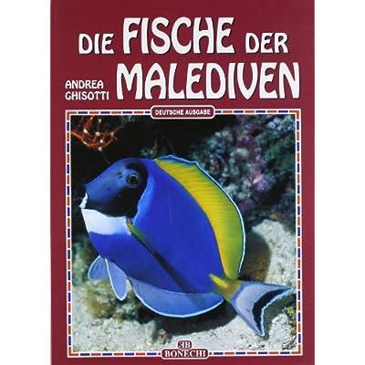 Read Fische Der Malediven Pdf Bishopanderson