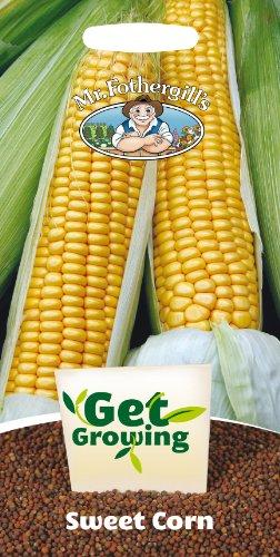 mr-fothergills-21386-get-growing-swift-xt-1975-f1-sweet-corn-seeds