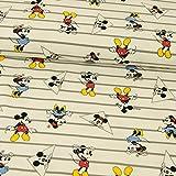 Baumwolljersey Lizenzstoff Mickey Mouse Streifen grau weiß Kinderstoffe - Preis Gilt für 0,5 Meter
