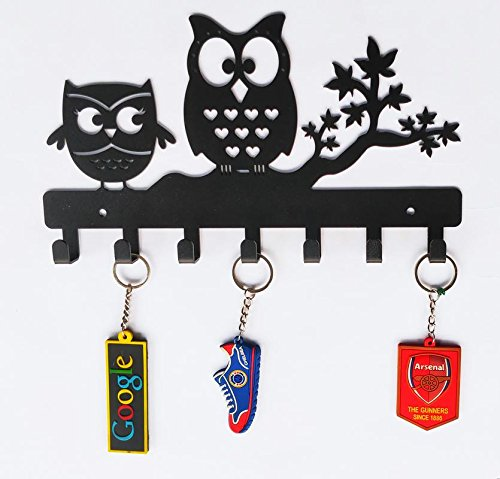 Heavenlykraft Owl Duo Metal Key Holder, Steel Key Rack