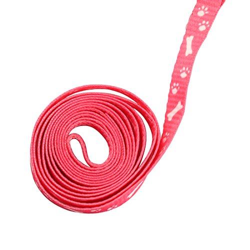 Welpen Blei Haustier kleiner Hund Nylon Drucken Halsband Gurt Leine Set Neck Einstellbare Farbe zuf?llig - 5