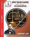 Company Law Notes CS Executive December 2018 (2013 Syllabus)