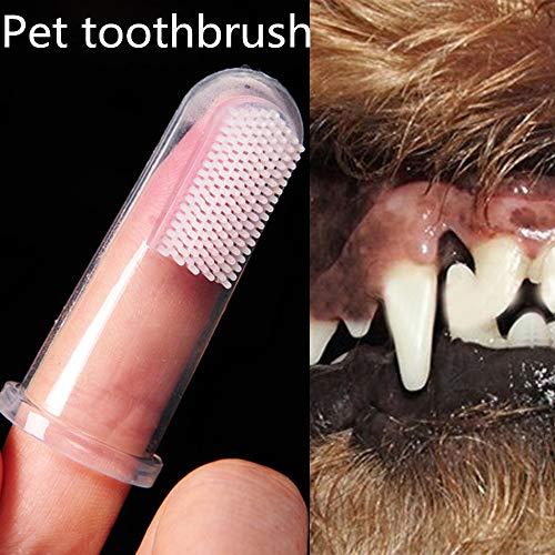 Gaddrt 5 cm Super weiche Haustierzahnbürste Teddy Hundebürste Bad Atem Zahnstein Zahnpflege Hund Katze Reinigungsmittel