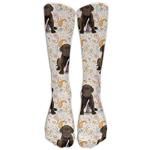 046bf552e9e Puppy Chocolate Lab Kisses Long Dress Socks Cotton Sport Comfortable  Breathable Over-The-Calf
