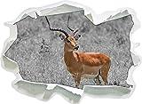 gracile Dorcas Gazelle in Erba Selvatica Bianco, Carta da Parati 3D Formato Nero/Autoadesivo: 62x45 cm Decorazione della Parete 3D Wall Stickers Parete Decalcomanie