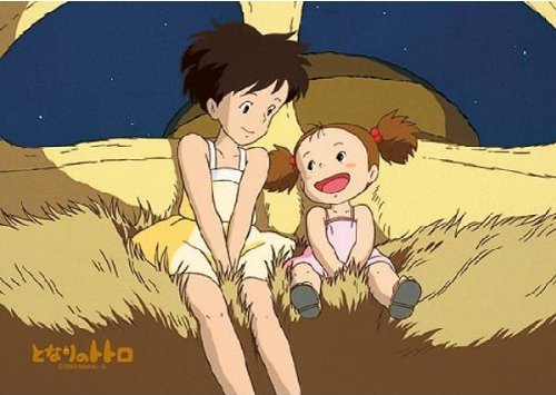 108-253 to go home to a house of My Neighbor Totoro is a 108 piece (japan import)